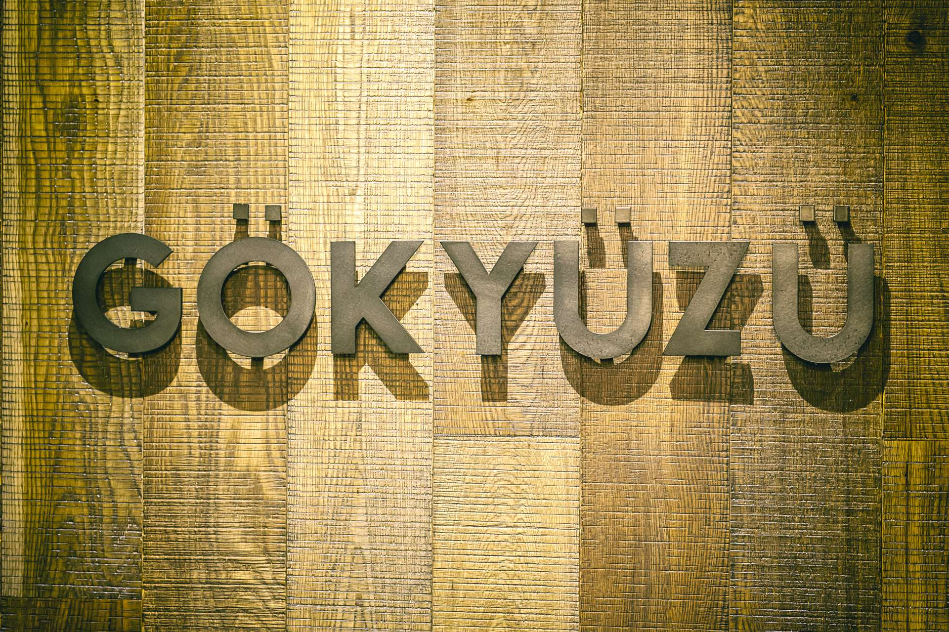 Gokyuzu Restaurant Green Lanes Harringay (10)